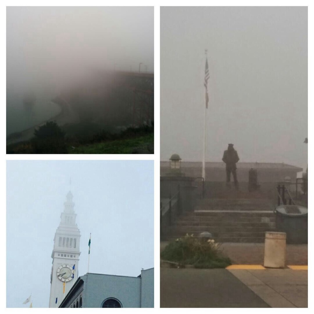 Foggy morning in pier 39& view point.